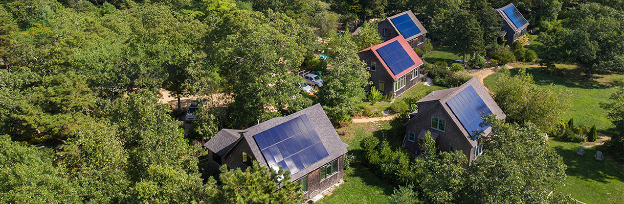 Solar panels on house roofs in a forest area.